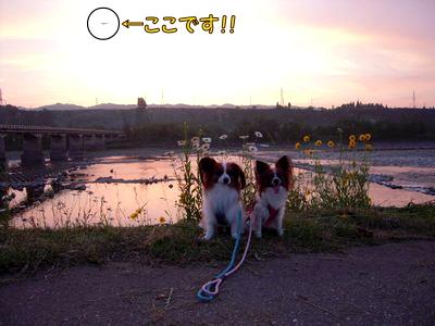 200806105.jpg
