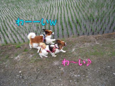 200806117.jpg