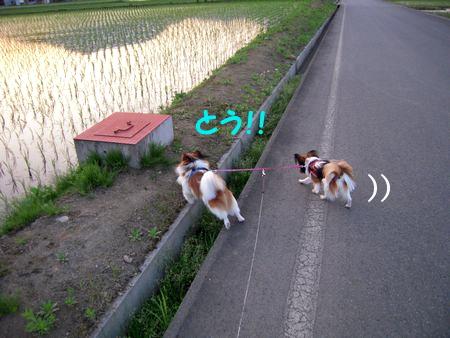 200806124.jpg