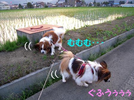 200806125.jpg