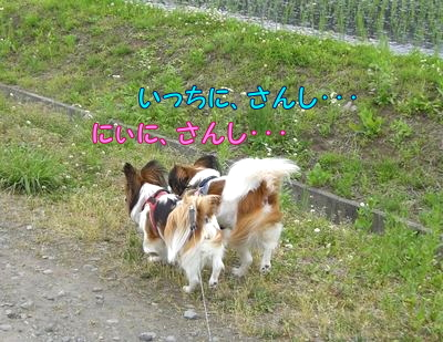 200806191.jpg