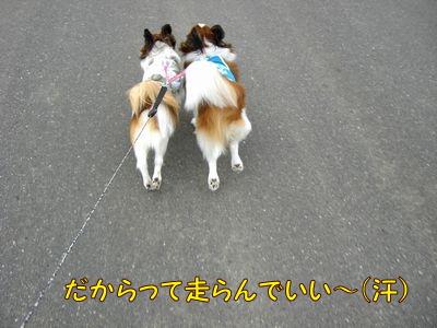200806246.jpg
