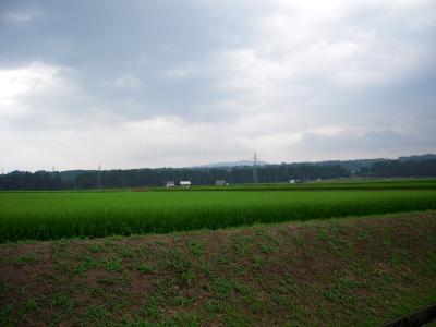 200807201.jpg