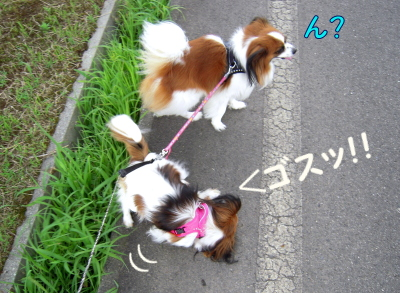 200807209.jpg