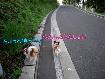 200807253.jpg