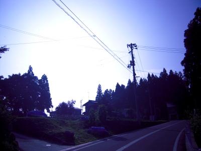 200807254.jpg