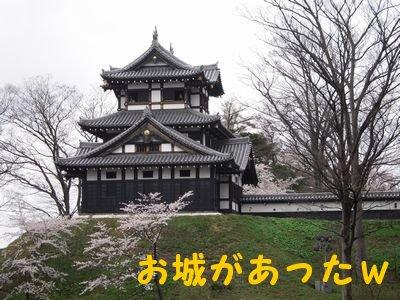 20084143.jpg