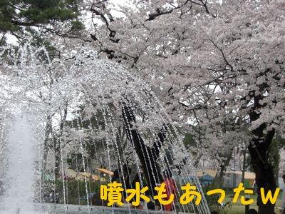 20084146.jpg