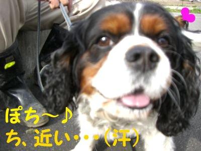 200841710.jpg