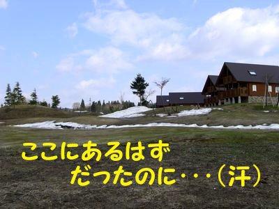 20084204.jpg