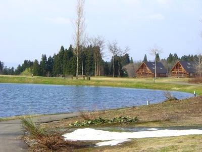 20084207.jpg