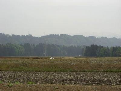 20084271.jpg