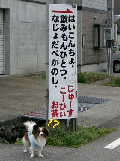 20084275.jpg