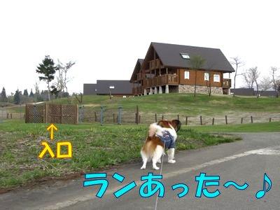 20084281.jpg