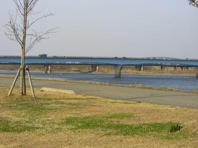 2008474.jpg