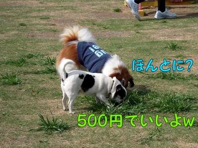 2008553.jpg
