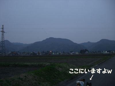 2008568.jpg