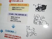 IMG_0697nw4.jpg