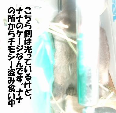 DSCF6662415.jpg