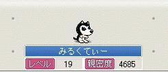 Maple1101.jpg