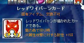 Maple1211.jpg