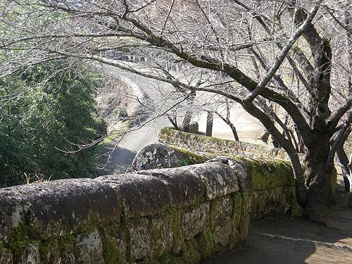 岡城跡・城壁①