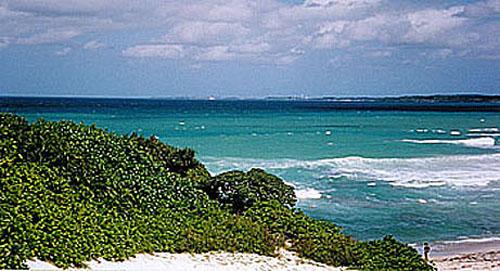 石垣島の海④