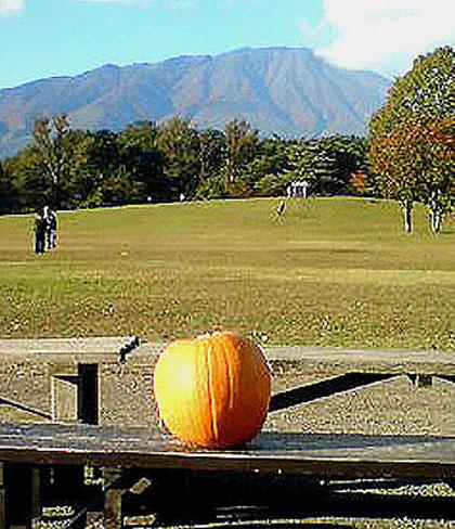 岩手山とかぼちゃ