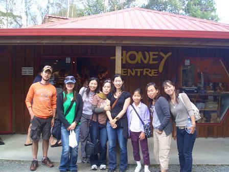 honey factory2
