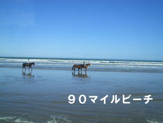 90マイルビーチ