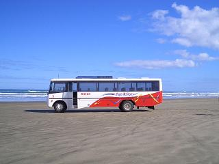 cape reinga bus