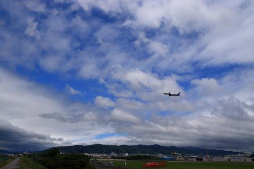 ANA A320 NH505@猪名川土手(by SIGMA 18-50)