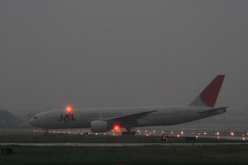 JAL B777-246 JL125@エアフロントオアシス(by EF100-400)
