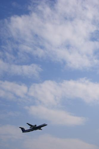 ANA DHC8-Q400 NH1677@下河原緑地(by SIGMA 18-50)