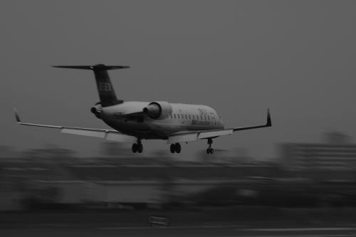 IBEX CRJ200ER FW3176@千里川土手(by EF100-400)