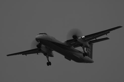 ANA DHC8-Q400 NH1660@千里川土手(by EF100-400)