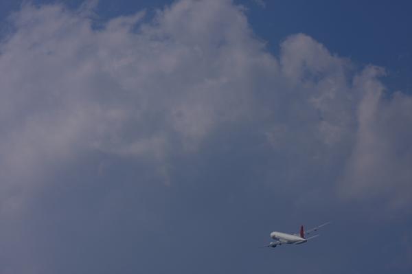 JAL B777-246 JL120@猪名川土手付近(by 40D with EF100-400)