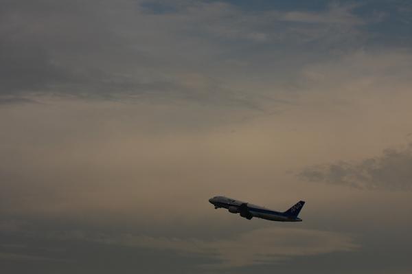 ANA A320 NH979@猪名川土手付近(by 40D with EF100-400)