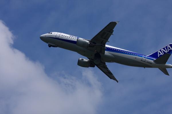ANA A320 NH505@猪名川土手付近(by 40D with EF100-400)