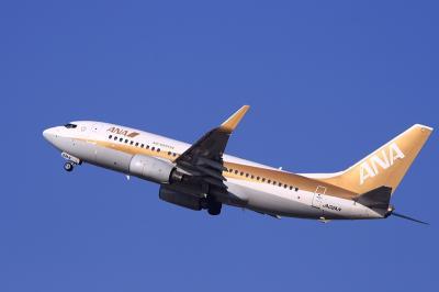 ANA B737-781 GoldJet NH445@RWY14Rエンド脇再開発地区(by EF100-400)