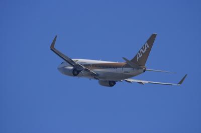 ANA B737-781 GoldJet NH513@RWY14Rエンド(by EF100-400)