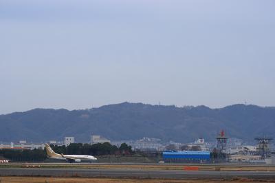 五月山 with ANA B737-781 GoldJet NH516@RWY14Rエンド脇再開発地区(by EF28-90)