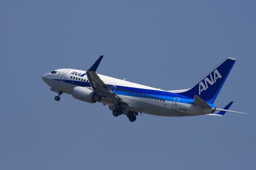 ANA B737-781 NH161@猪名川土手(by EF100-400)