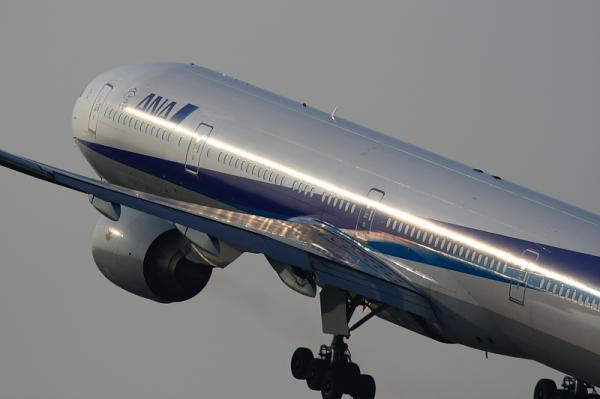 ANA B777-381 NH34@こども文化科学館裏付近(by KDX with EF100-400)
