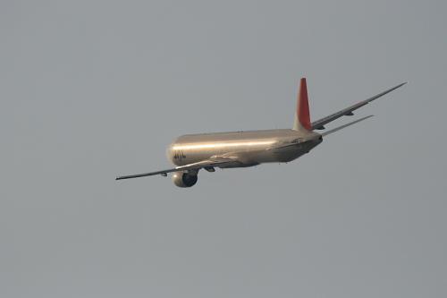 JAL B777-346 JL126@RWY14Rエンド(by EF100-400)