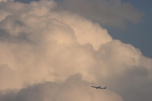 南に覆う雲 with ANA B777-381 NH34@RWY14Rエンド(by EF100-400)