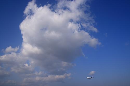 東の空 with ANA B737-781 NH446@スカイランドHARADA(by SIGMA 18-50)