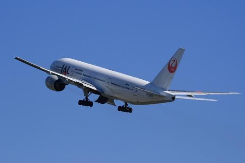 JAL B777-246 SterJet Procyon JL104@こども文化科学館裏付近(by EF100-400)