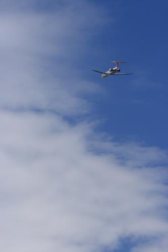 JAL MD-90 JL2375@猪名川土手(by EF100-400)