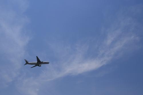 JAL B777-246 StarJet Procyon JL114@下河原緑地展望台(by SIGMA 18-50)